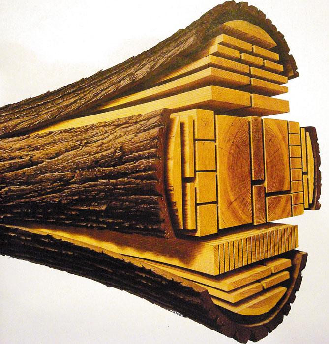 Сертификат на древесину, сертификация древесины